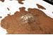 Карта путешествий со стирающимся покрытием